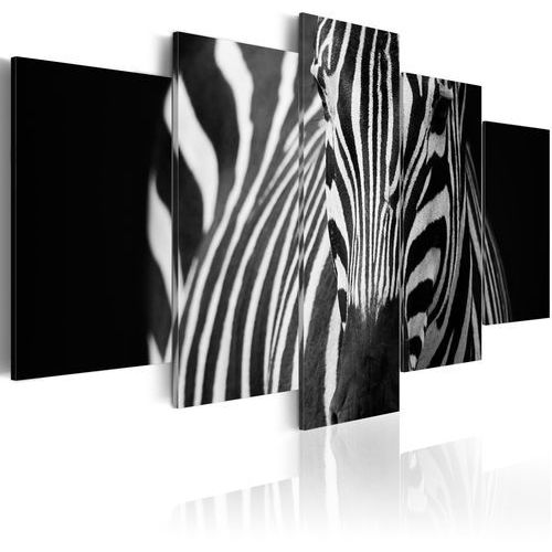 Obraz - spojrzenie zebry marki Artgeist