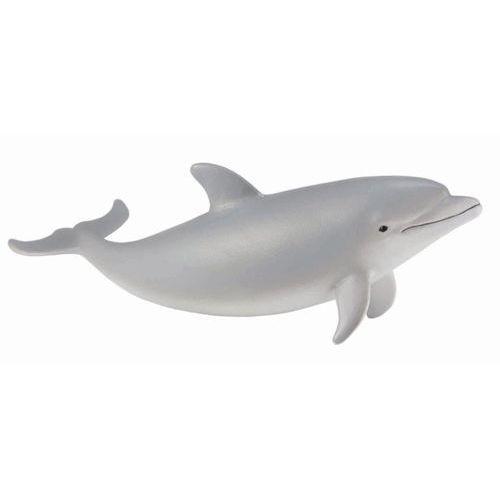 Delfin s - dante alighieri. darmowa dostawa do kiosku ruchu od 24,99zł marki Collecta