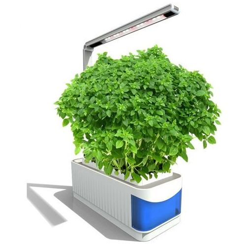 Inteligentna doniczka Bentech Smart Garden