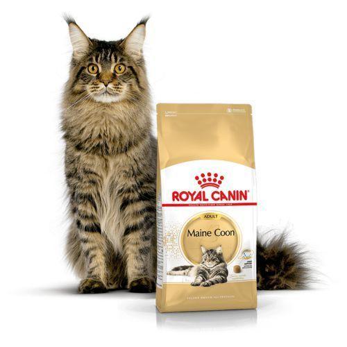 Karma Royal Canin MAINECOON 4 kg - 3182550710657- natychmiastowa wysyłka, ponad 4000 punktów odbioru! (3182550710657)