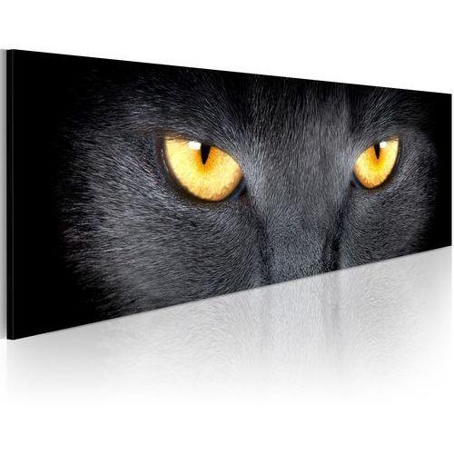 Obraz - Look into my eyes...