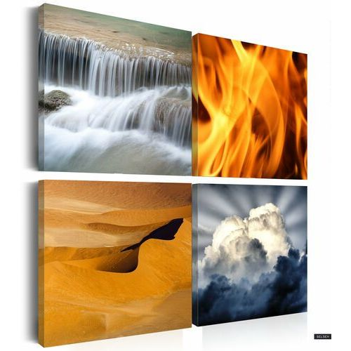 Selsey obraz - różnorodność przyrody 80x80 cm