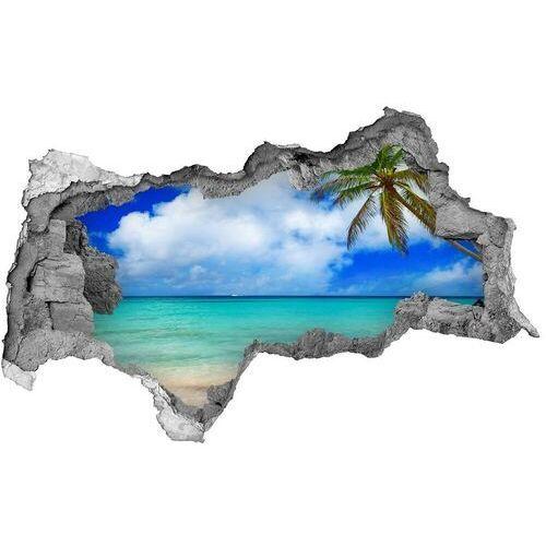 Dziura 3d w ścianie naklejka Karaiby plaża