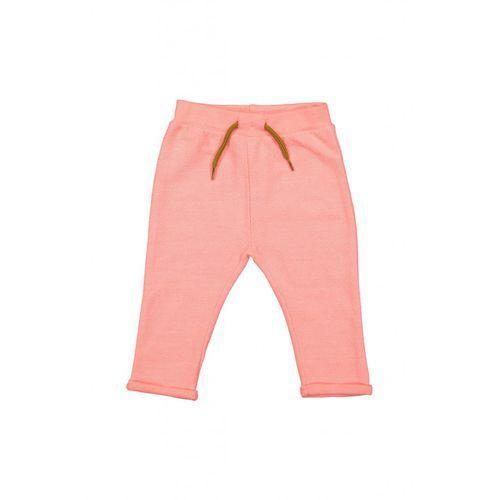Spodnie dresowe niemowlęce 5L35A5