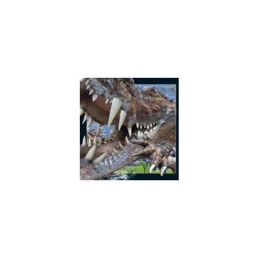 Worth keeping Magnes 3d - krokodyl (5710431010893)