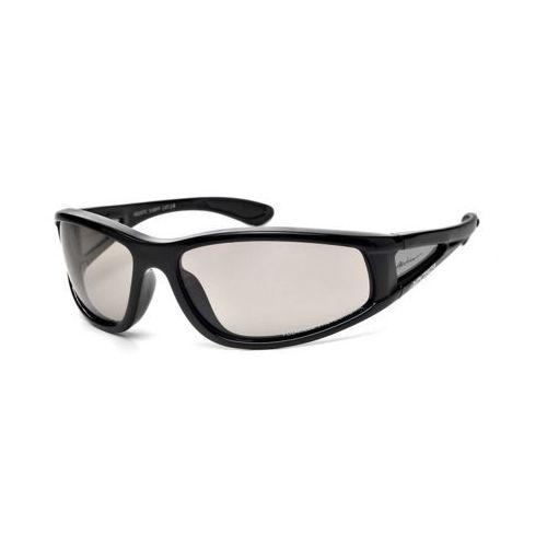 Okulary przeciwsłoneczne s-69 fp marki Arctica