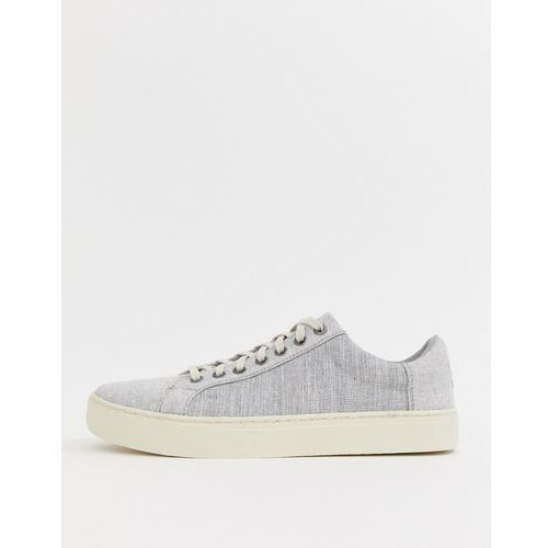 Toms lenox chambray trainers in grey - grey