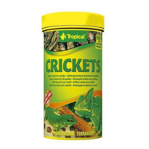 TROPICAL Cricket - suszone świerszcze dla gadów i dużych ryb akwariowych 250ml/25g