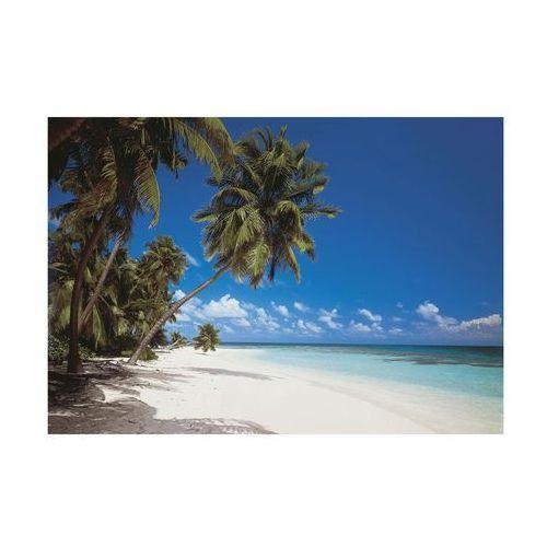 Fototapeta papierowa MALDIVES
