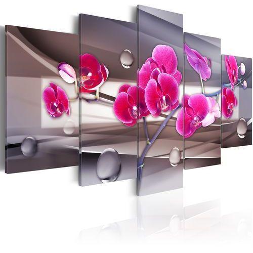 Obraz - Orchidea na stonowanym tle