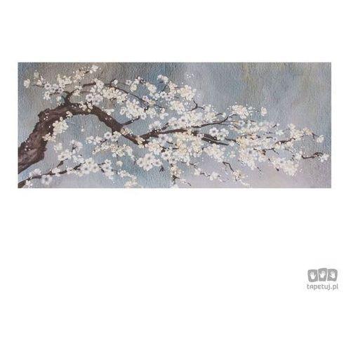 Obraz Drzewo kwitnące wiosną 41-542