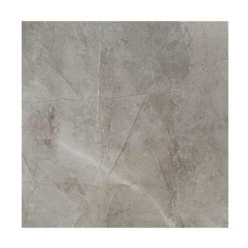 Gres szkliwiony Remos Grey 59.8 X 59.8 Arte
