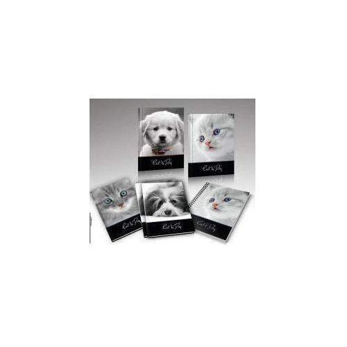 Zeszyt A5, 16 kartek w linię Cat&Dog (20 sztuk), 5905184919498 (5595421)