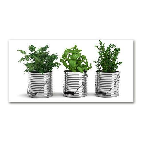 Foto obraz akryl Aromatyczne rośliny