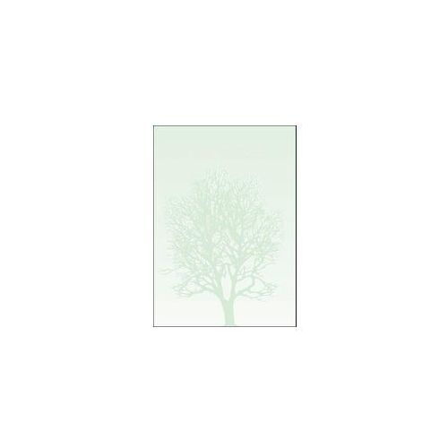 Galeria papieru Arkusze barwne drzewo 100g 50 szt (5903069910509)