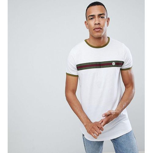Le Breve TALL Chest Striped T-Shirt - White