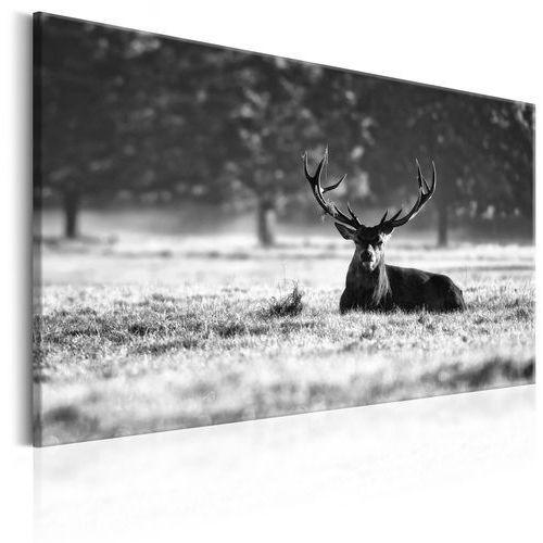 Artgeist Obraz - leżący jeleń