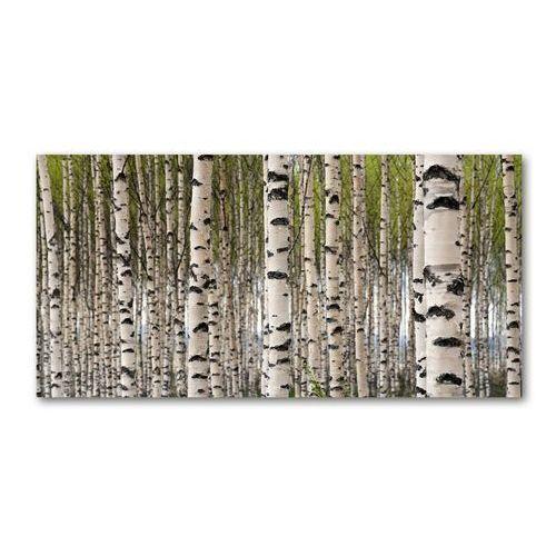 Obraz zdjęcie szkło akryl Brzozowy las