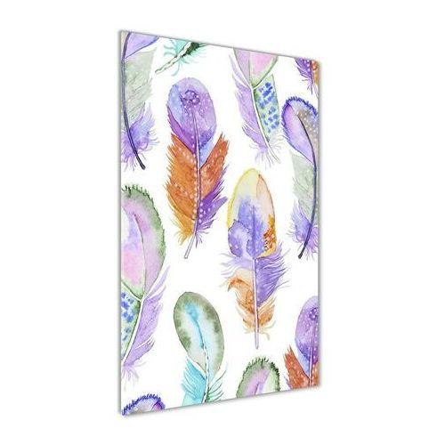 Foto obraz akryl do salonu kolorowe pióra marki Wallmuralia.pl