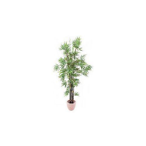 bamboo black trunk, 210cm, sztuczna roślina, marki Europalms