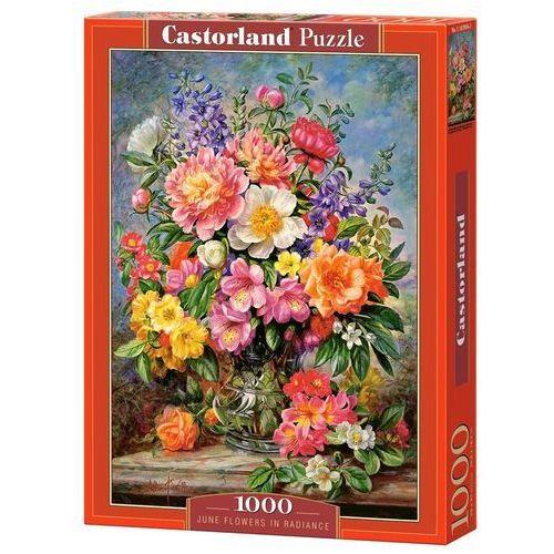 Puzzle 1000 June Flowers in Radiance - Castor OD 24,99zł DARMOWA DOSTAWA KIOSK RUCHU, 1_620400