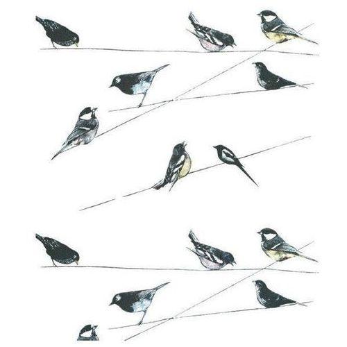 Karnet 17x14cm z kopertą garden birds wallpaper marki Museums & galleries