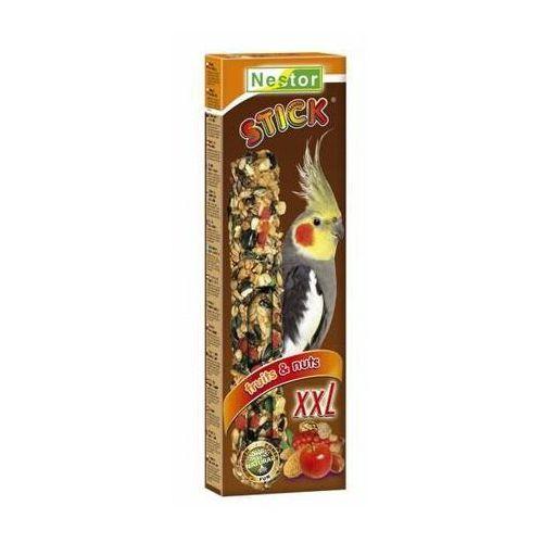Nestor Kolba XXL Papuga średnia - owoc i orzech - produkt z kategorii- Pokarmy dla ptaków