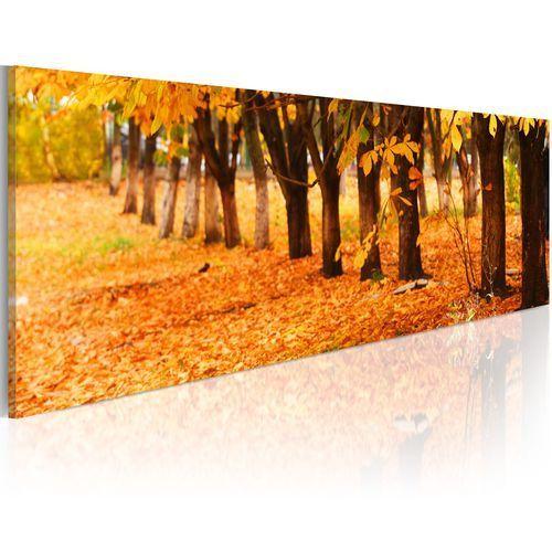Obraz - park covered with golden leaves marki Artgeist