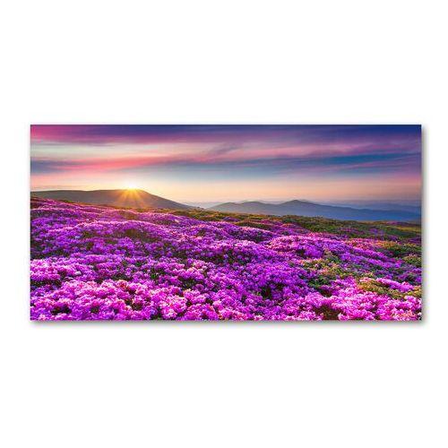 Fotoobraz na ścianę szklany Kwiaty w górach