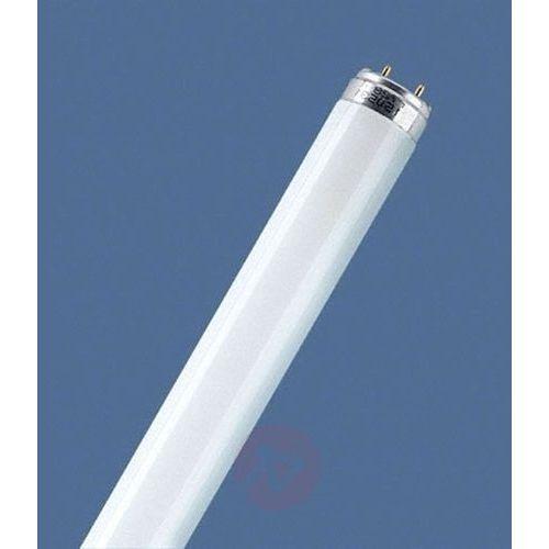 G13 T8 30W 840 świetlówka LUMILUX, 4050300518039