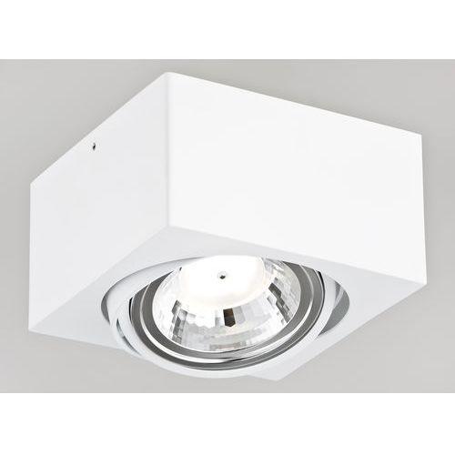 Argon Kinkiet rodos 3070 lampa sufitowa 1x5w led biała (5908259944951)