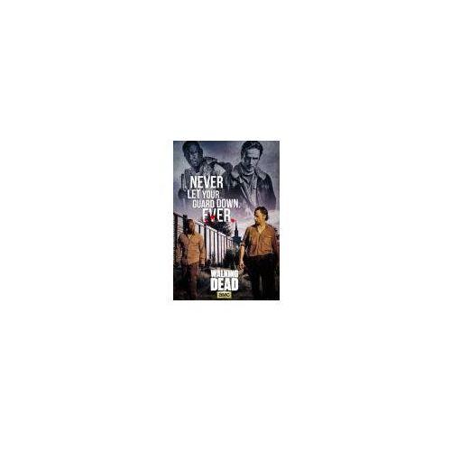 The Walking Dead Rick i Morgan - plakat