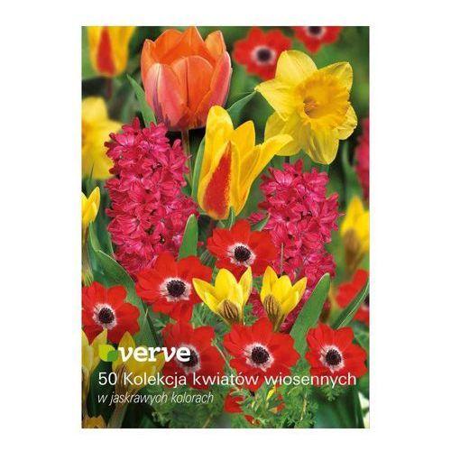 Verve Cebule mix wiosenny vibrant 50 szt. (3663602448747)