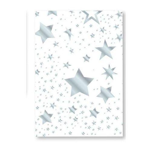 Karton  star 300g 50x70cm - biało/srebrny marki Heyda