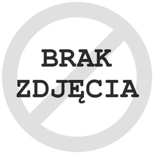 Bridgestone Blizzak W995 215/65 R16 109 R