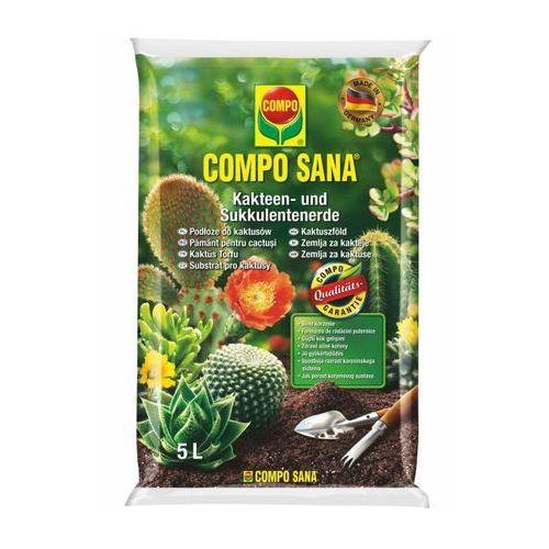 Podłoże do kaktusów marki Compo