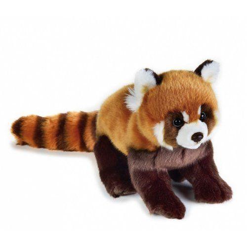 Panda czerwona (8004332707165)