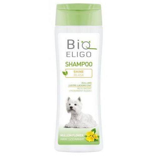 DermaPharm BioEligo Blask szampon dla sierści matowej 250ml