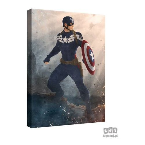 Obraz MARVEL Capitan America: The Winter Soldier PPD338, PPD338