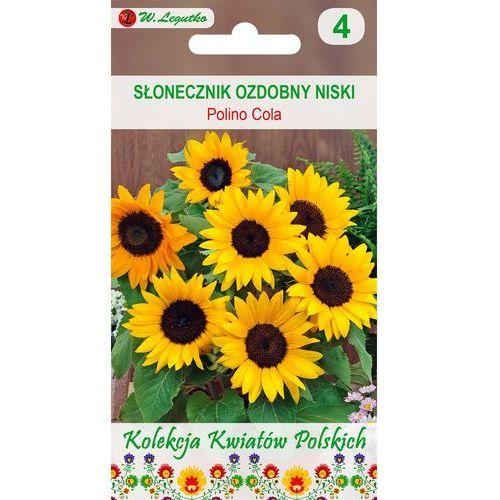 kwiaty polskie słonecznik polino cola 1g marki Legutko