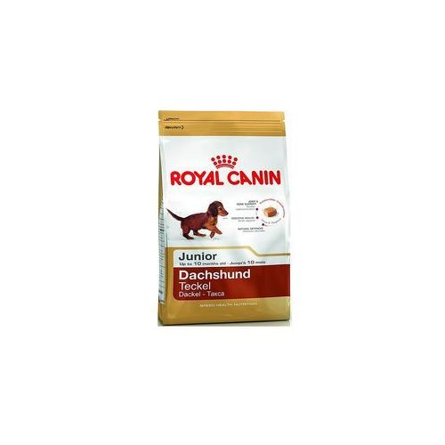 dachshund junior 1,5kg marki Royal canin