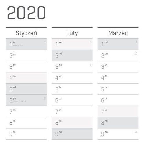 Planer na ścianę 2020 papierowy suchościeralny A1 SC