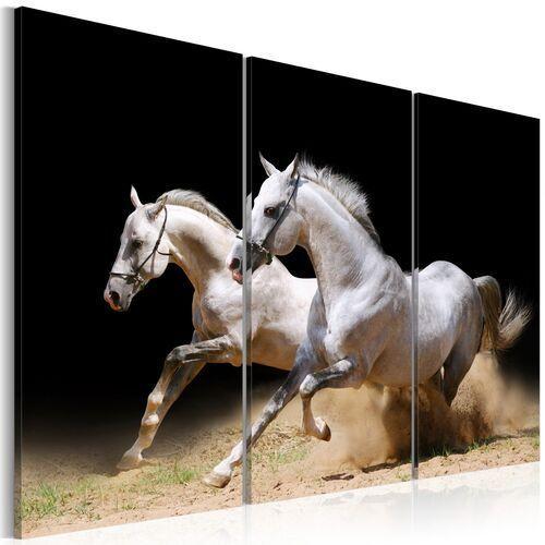 Obraz - Konie - moc i prędkość