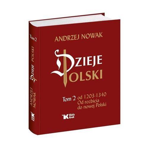 Dzieje Polski Od rozbicia do nowej Polski Tom 2 - Wysyłka od 3,99 - porównuj ceny z wysyłką (384 str.)