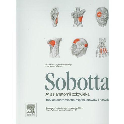 Atlas anatomii człowieka Sobotta. Tablice anatomiczne mięśni, stawów i nerwów (2013)