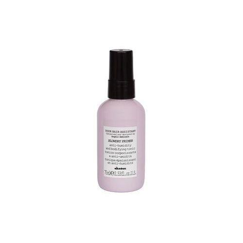Your Hair Assistant BLOWDRY PRIMER - spray zabezpieczający przed temperaturą 75ml