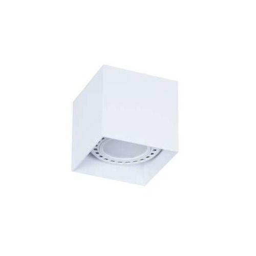 Spot lampa oprawa sufitowa Cleoni Tito D2 1x13W GU10 biały beskidzki T113D2117! WYPRZEDAŻ OSTATNIE SZTUKI!