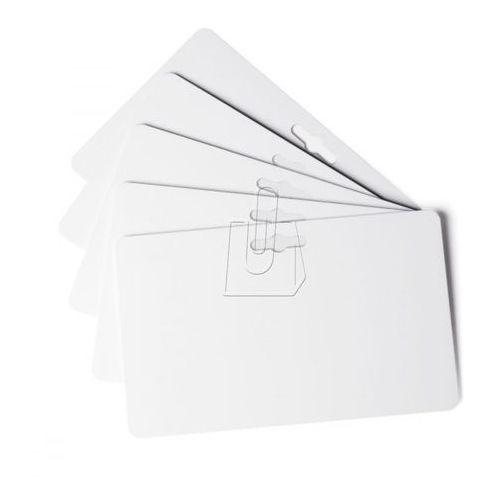 Karty Durable Duracard białe z euro-otworami 100 szt. 8916-02, 56029