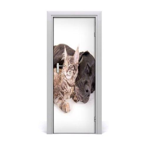 Naklejka samoprzylepna na drzwi ścianę Pies i kot