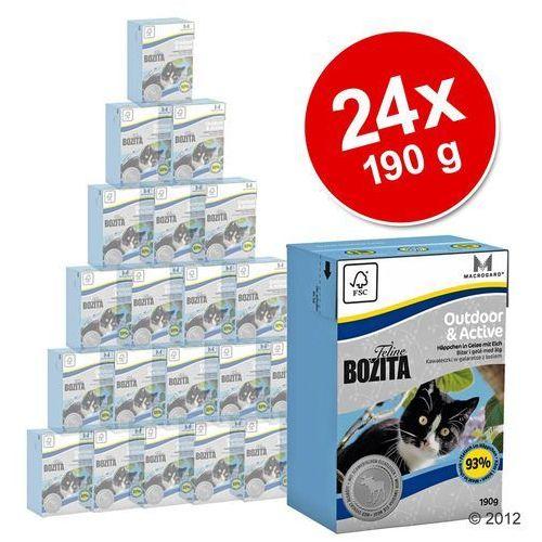 BOZITA Feline Hair & Skin Sensitive - tetra pak 24x190g (7300330020611)